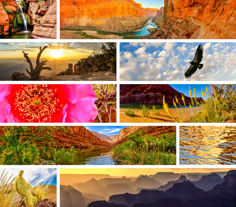 Click to view sample images from Grand Canyon Country